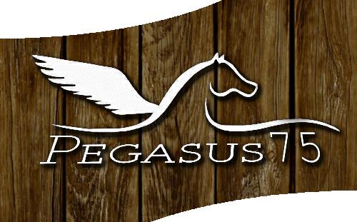 Pegasus75